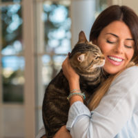 pet insurance for older cats