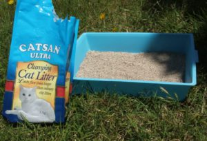 which is the best cat litter