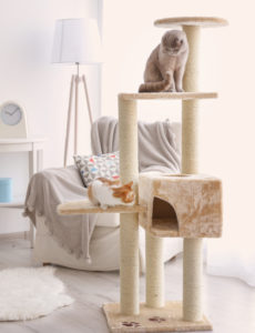 best cat condos for large cats