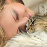why and how cats purr