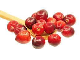 cranberries for cat urinary health