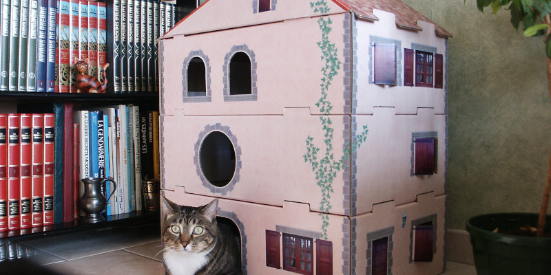 cardboard cat house ideas