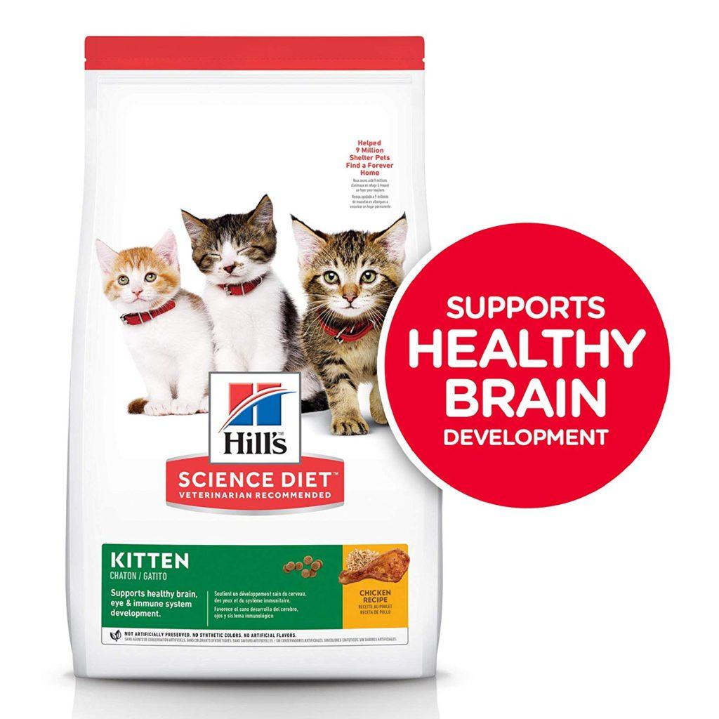 hills science kitten food