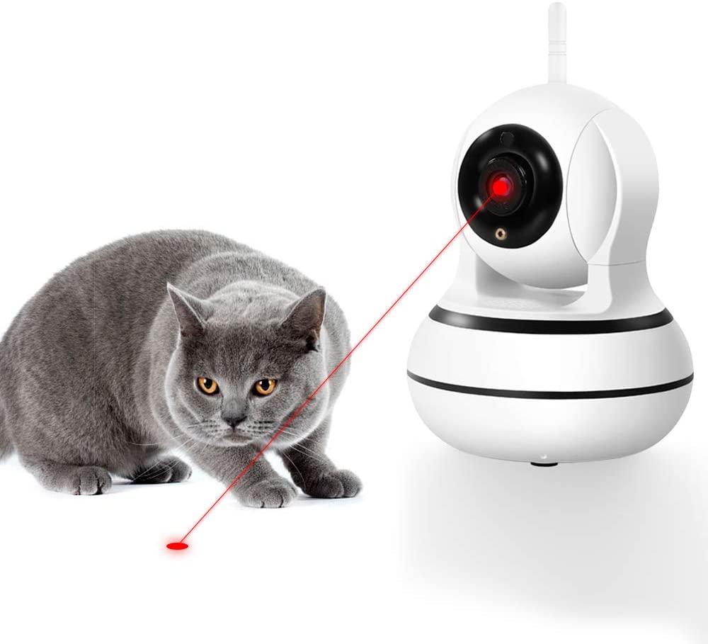 dog cool smart pet camera