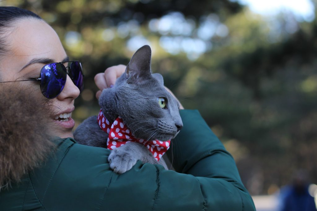 woman holding russian blue cat