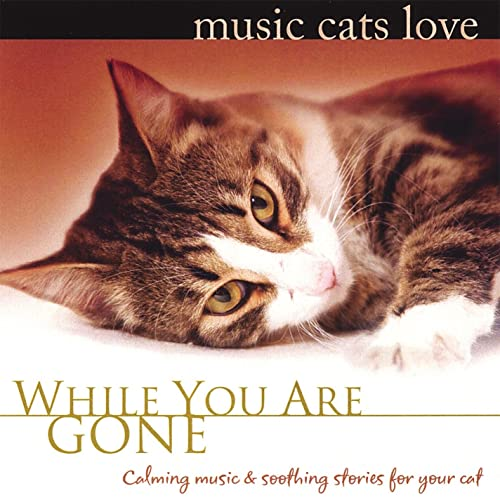 music cats love while you are gone