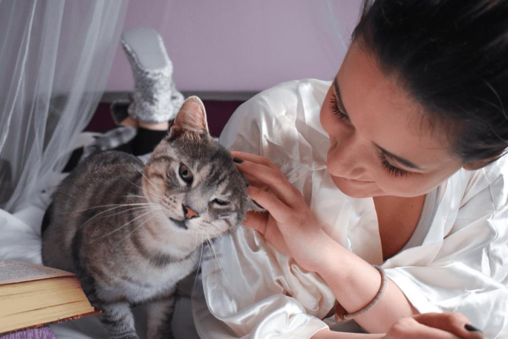 woman petting grey cat