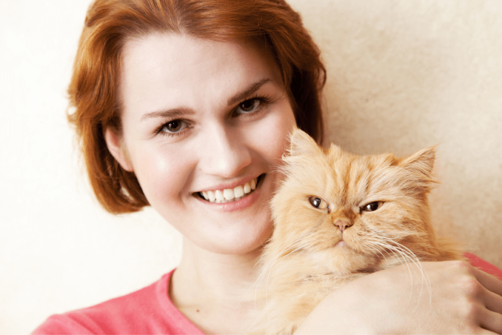 persian cats are very affectionate