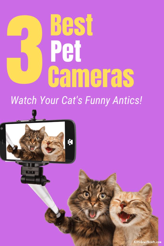 best pet cameras