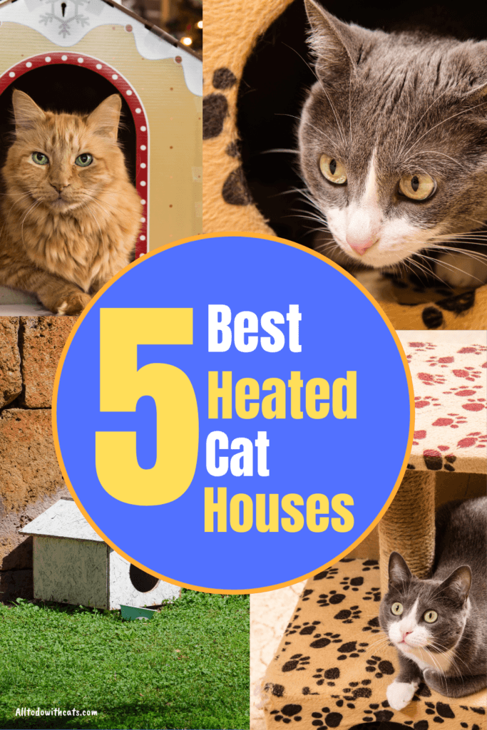 best heated cat houses