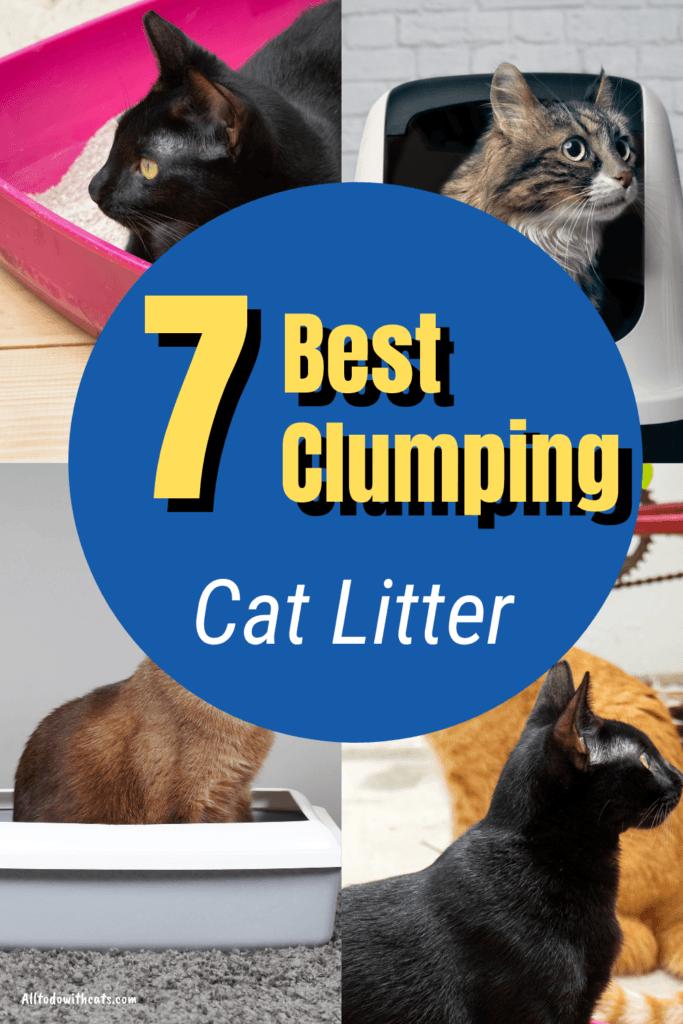 7 best clumping cat litter