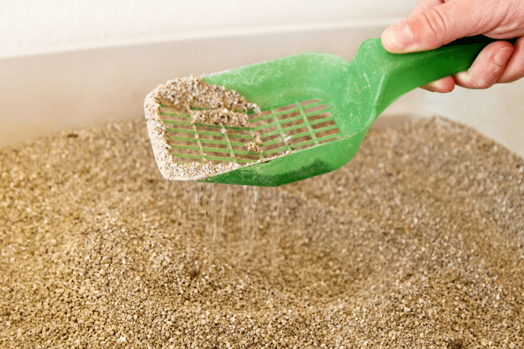 is clumping cat litter bad for the environment