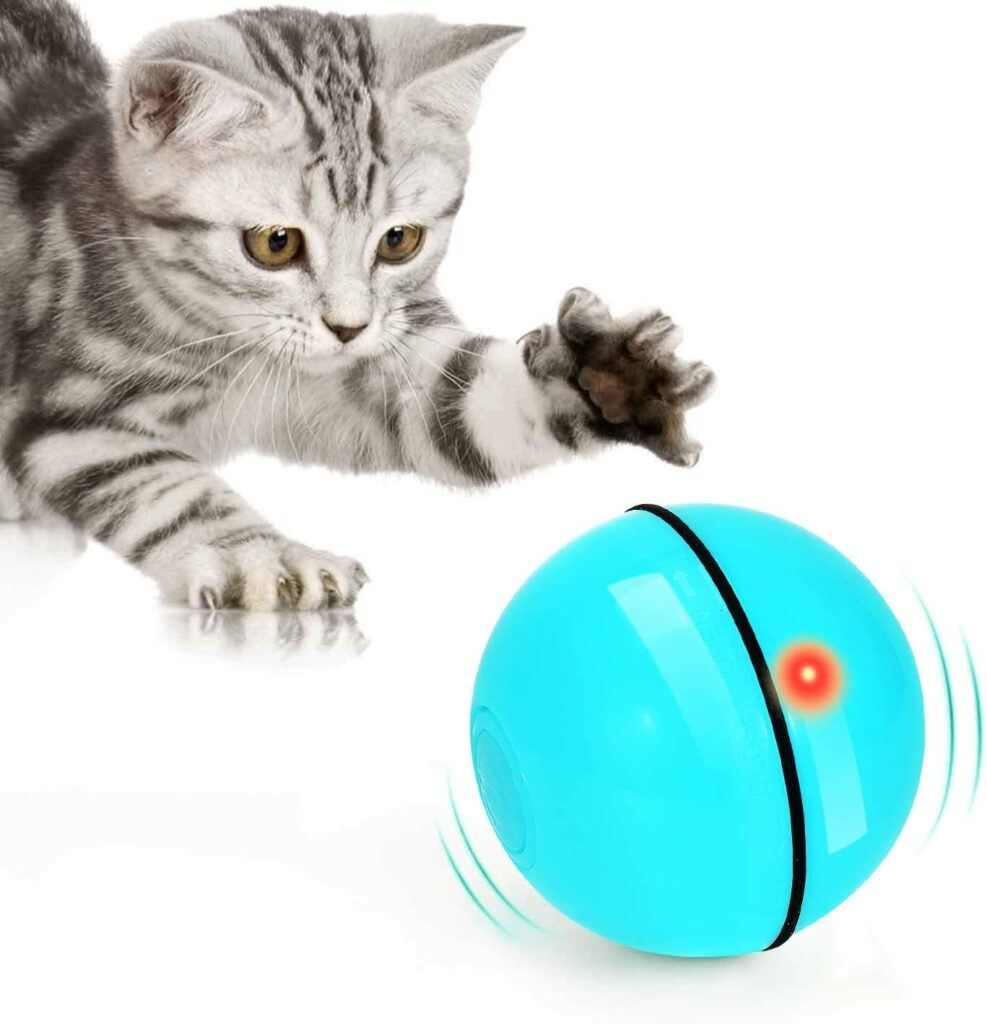 wwvvpet interactive cat toy ball