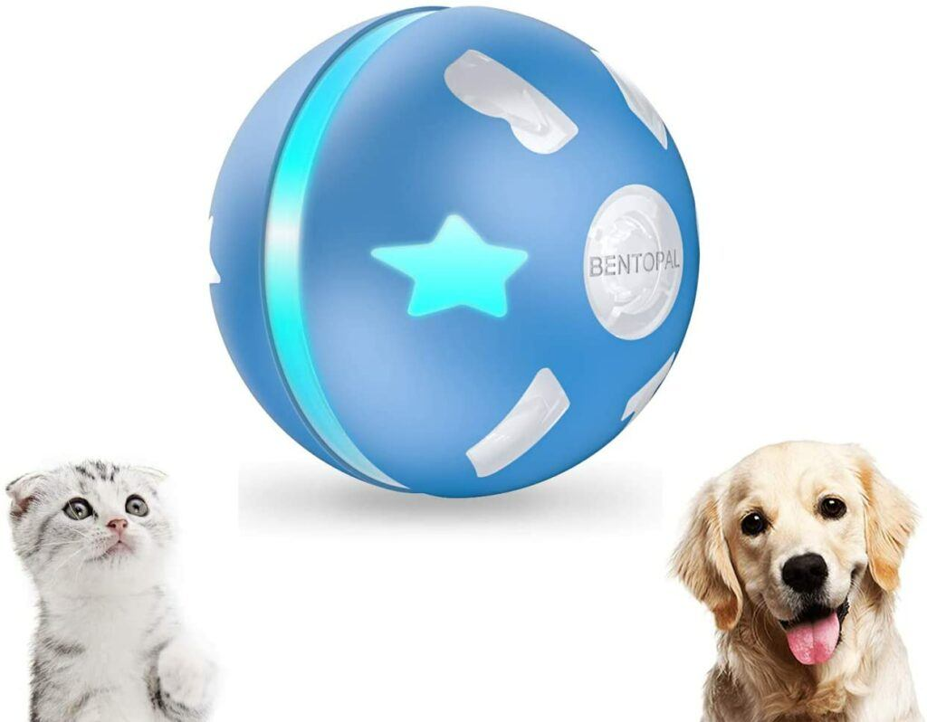 petdroid interactive spinning ball cat toy