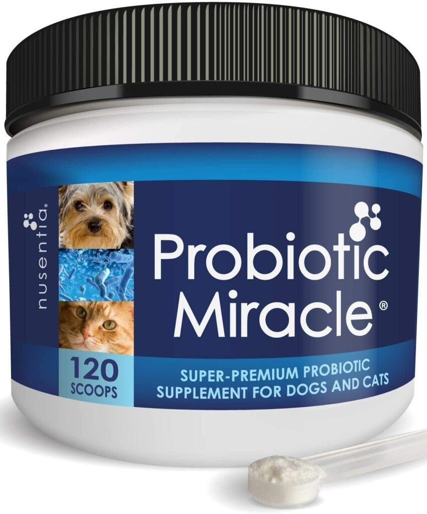 nusentia probiotics for cats and dogs