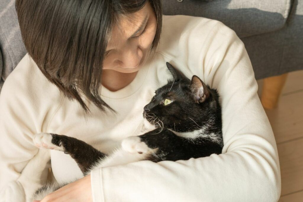 health benefits of owning a cat includes reduced risk of stroke