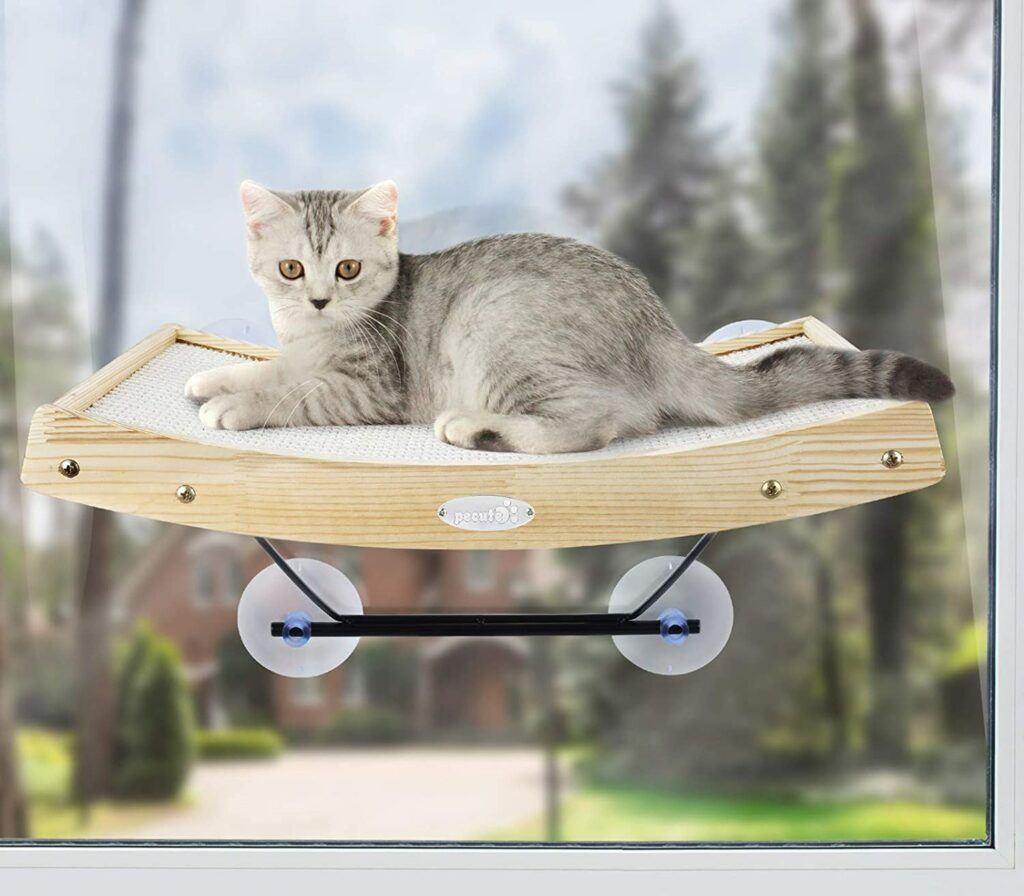 pecute cat window perch