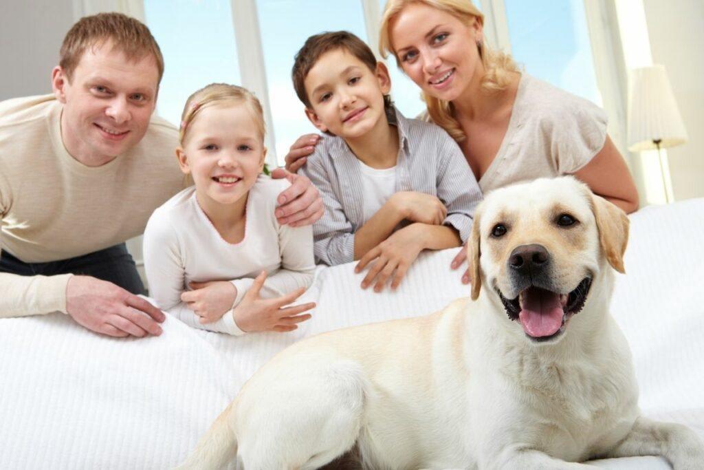 family with white labrador dog