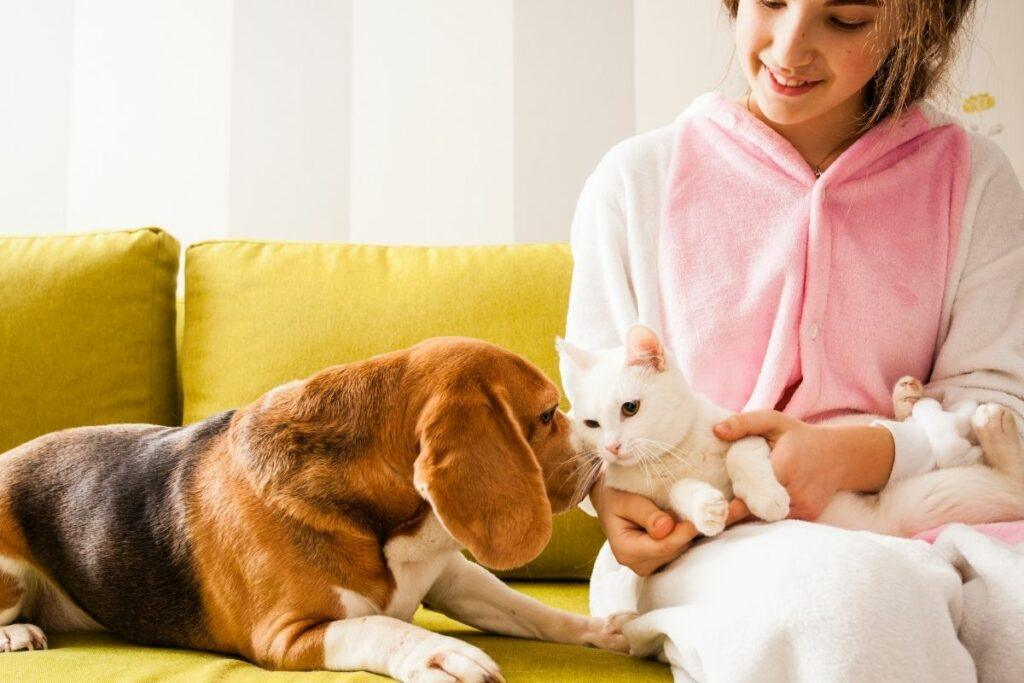 woman sitting on sofa with dog and cat