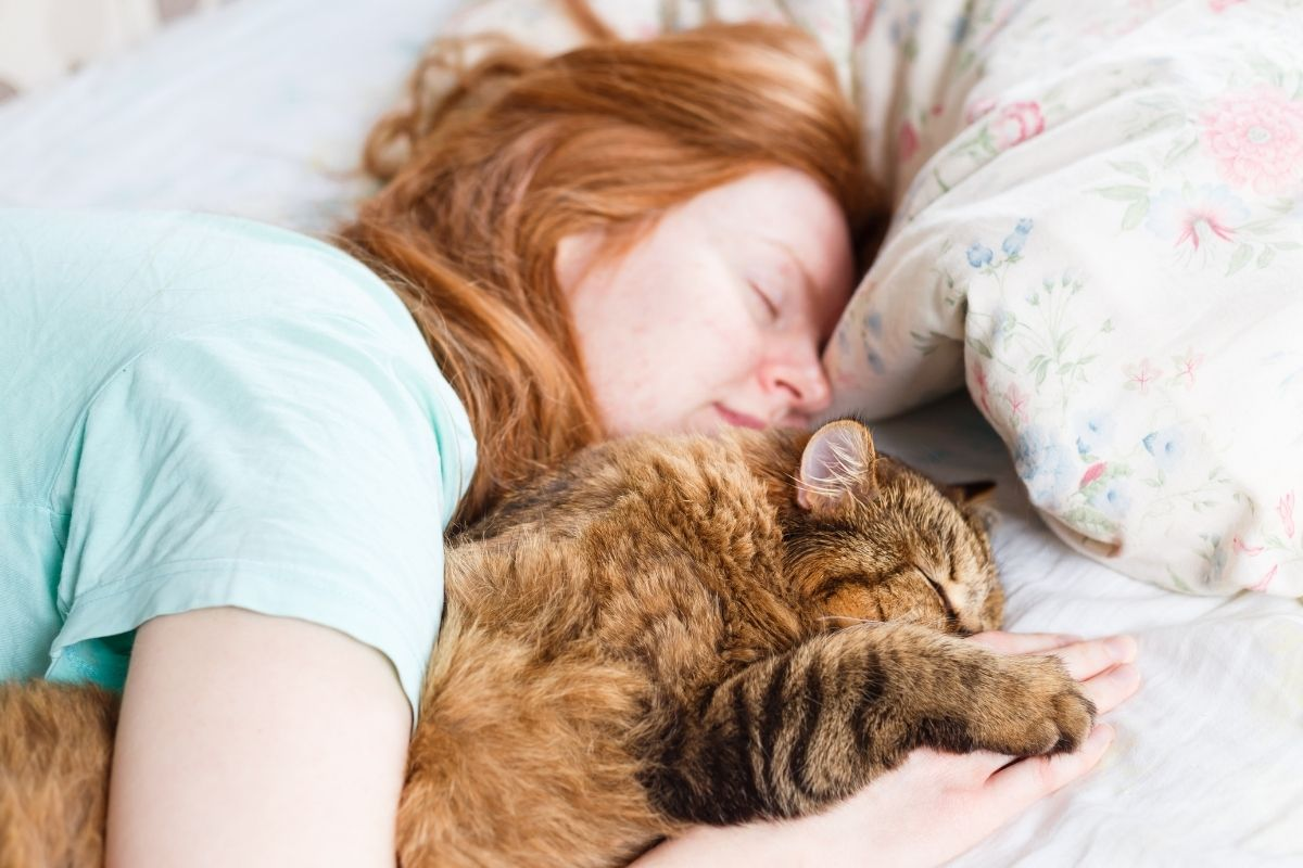 why do cats sleep with you